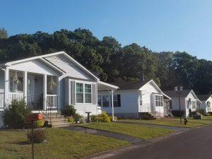 White homes